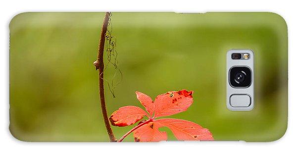 Solitary Red Leaf Galaxy Case