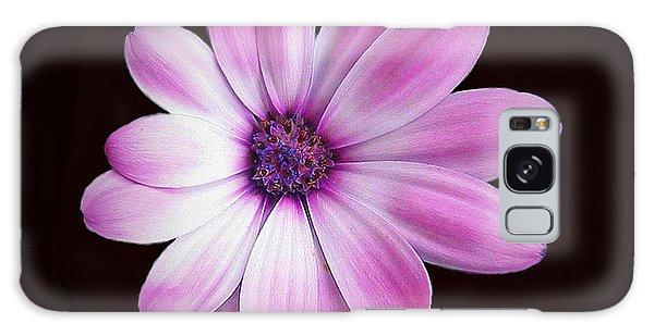 Solo Purple Flower Galaxy Case