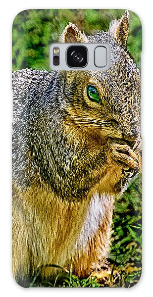 Some Squirrels Are Big Galaxy Case