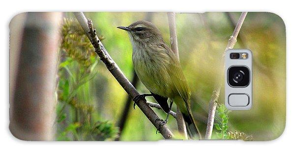 Songbird In The Glen Galaxy Case by Kimberly Mackowski