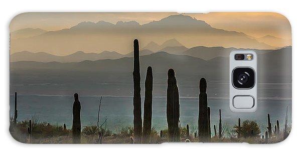 Sonoran Desert Sunset Galaxy Case