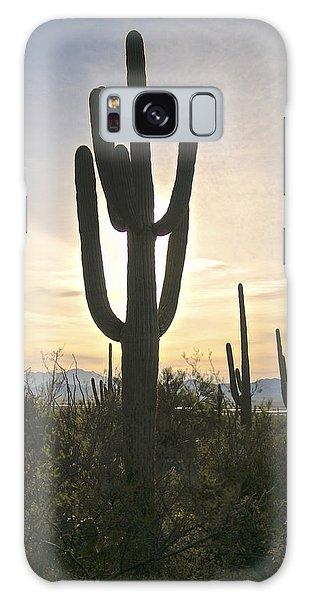 Sonoran Desert View Galaxy Case