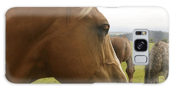 Sorrel Horse Profile Galaxy Case by Belinda Greb