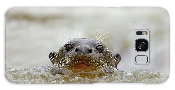 Otter Galaxy Case - South America, Brazil, Pantanal, Giant by Joe and Mary Ann Mcdonald