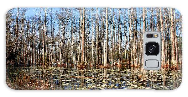 South Carolina Swamps Galaxy Case