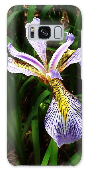 Southern Blue Flag Iris Galaxy Case by William Tanneberger