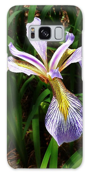 Southern Blue Flag Iris Galaxy Case