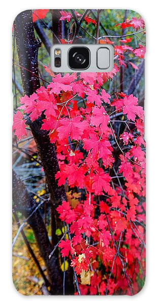 Southern Fall Galaxy Case by Chad Dutson