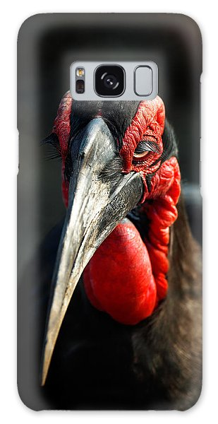 Southern Ground Hornbill Portrait Front View Galaxy Case
