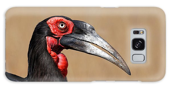 Southern Ground Hornbill Portrait Side View Galaxy Case