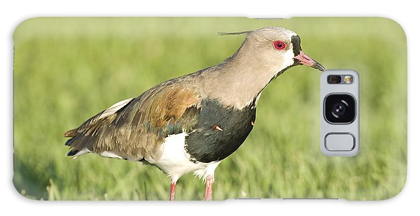 Lapwing Galaxy Case - Southern Lapwing by William H. Mullins