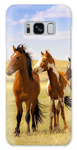 Southwest Wild Horses On Navajo Indian Reservation Galaxy Case by Jerry Cowart