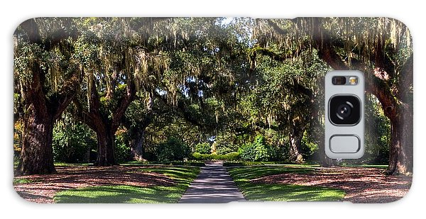 Galaxy Case featuring the photograph Spanish Moss 2 by Mel Steinhauer