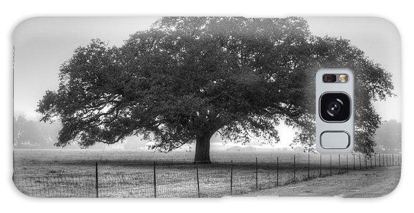 Spanish Oak Black And White Galaxy Case by Lanita Williams