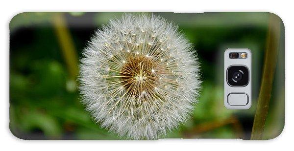 Sparkling Dandelion Galaxy Case by Debra Martz