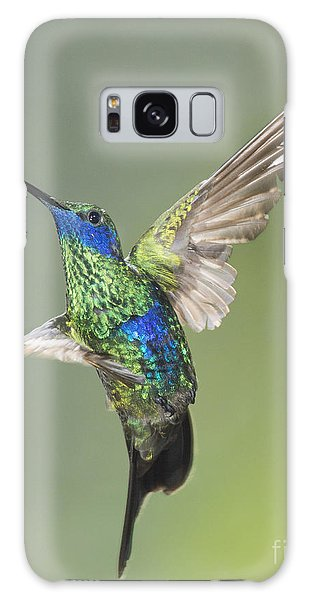 Sparkling Violet-ear Hummingbird Galaxy Case