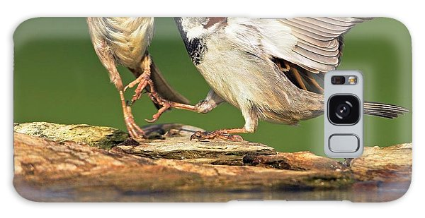 Sparrows Fighting Galaxy Case