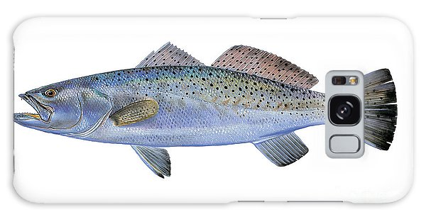 Drum Galaxy S8 Case - Speckled Trout by Carey Chen