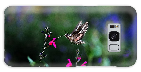 Sphinx Moth And Summer Flowers Galaxy Case by Karen Slagle