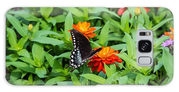 Spicebush Swallowtail Galaxy Case by Angela DeFrias