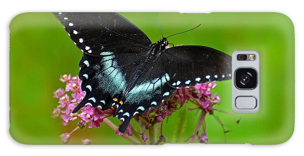 Spicebush Swallowtail Galaxy Case by Rodney Campbell