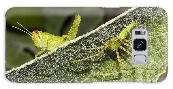 Spider-grasshopper Standoff Galaxy Case