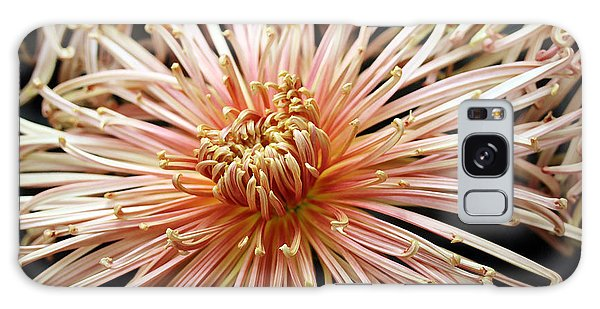 Spider Mum  Galaxy Case by Mary Haber