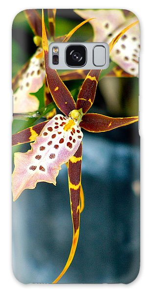 Spider Orchid Galaxy Case by Lehua Pekelo-Stearns