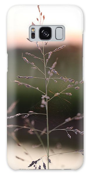 Spider Web And Wild Grass Galaxy Case