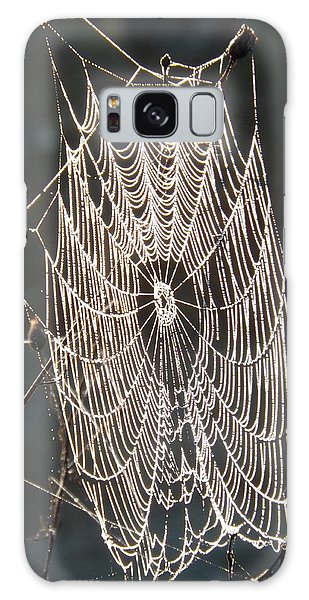 Spider Web Galaxy Case