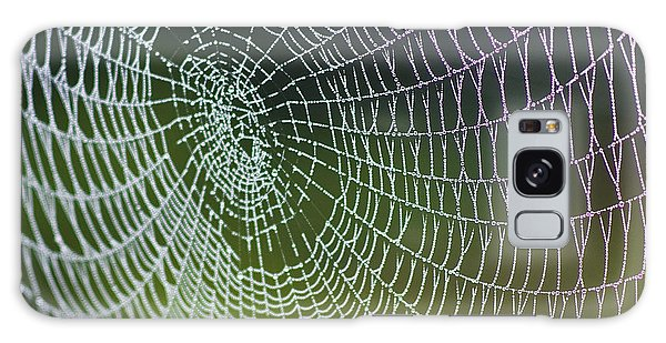 Galaxy Case featuring the photograph Spider Web by Heiko Koehrer-Wagner
