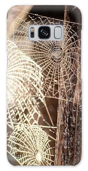 Spider Webs Galaxy Case by Anonymous