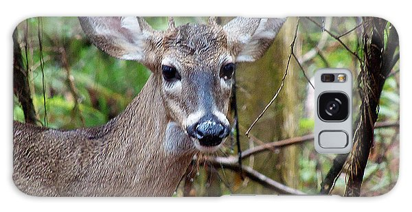 Spike Buck Whitetail Portrait Galaxy Case