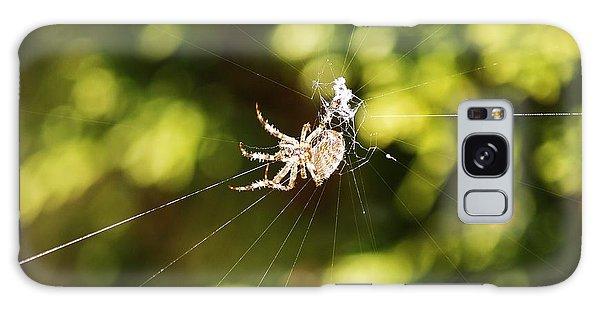 Spins A Web Galaxy Case by Al Fritz