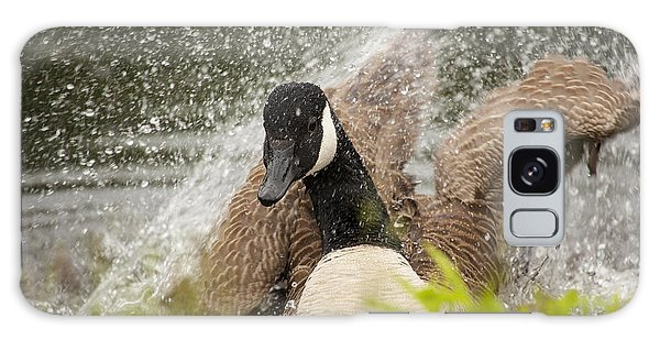 Canada Goose Galaxy Case - Splishing And Splashing by Karol Livote