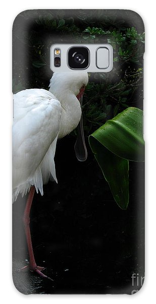 Spoonbill Morning Galaxy Case