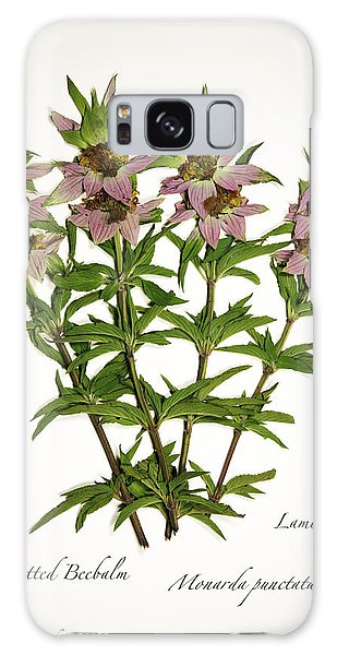 Spotted Beebalm 1 Galaxy Case