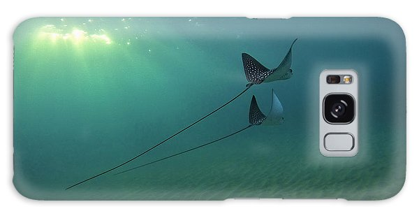 Spotted Eagle Rays During Sunset Galaxy Case