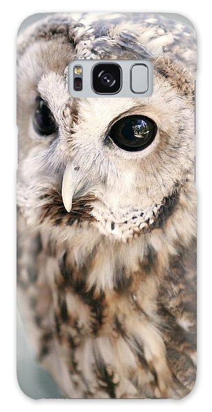 Spotted Owl Galaxy Case