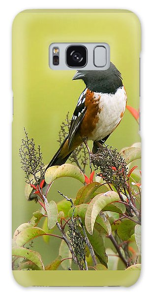 Galaxy Case featuring the photograph Spotted Towhee by Ram Vasudev