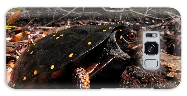 Spotted Turtle Galaxy Case