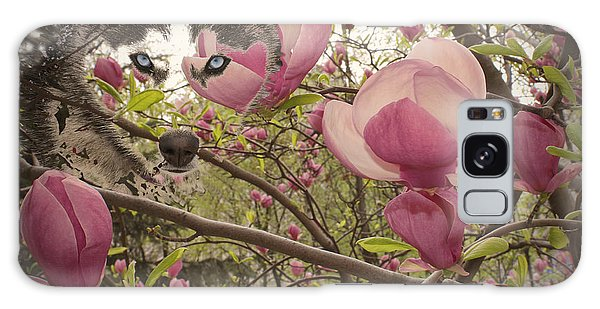 Spring And Beauty Galaxy Case