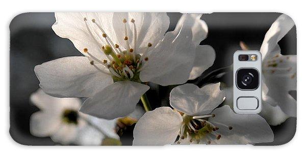 Spring Emerging Galaxy Case