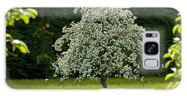 Spring - Blooming Apple Tree And Green Meadow Galaxy Case