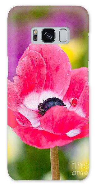 Spring Colors   Galaxy Case