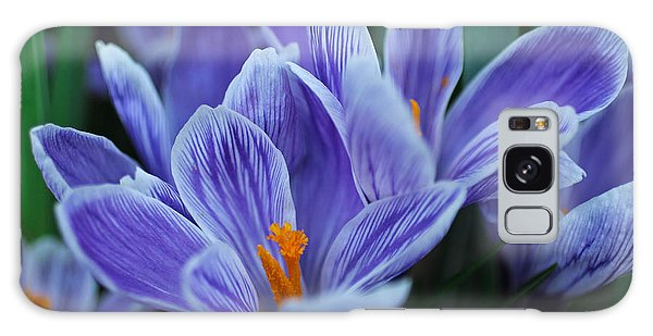 Spring Crocus Galaxy Case