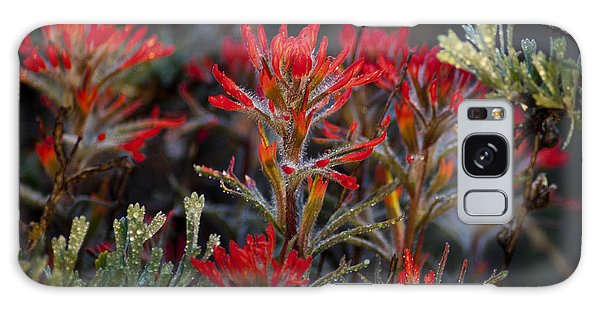 Spring Dew Paintbrush Galaxy Case