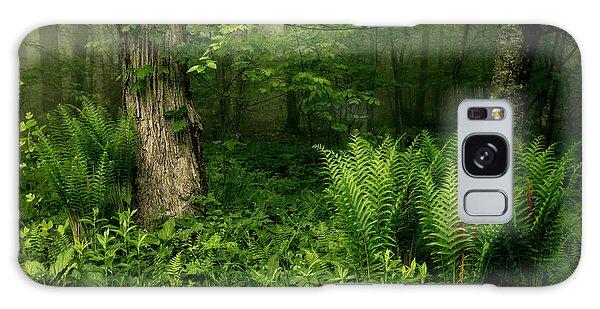 Spring Ferns Of The Blue Ridge 1 Galaxy Case