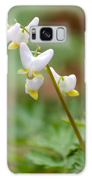Spring Flower Galaxy Case by Tiffany Erdman