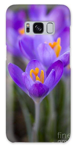Spring Has Sprung Galaxy Case